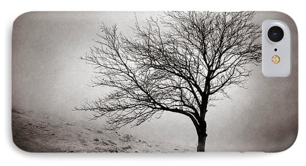 Winter Tree IPhone Case by Dave Bowman