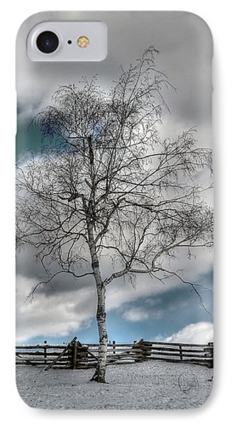 Winter Tree Phone Case by Todd Hostetter