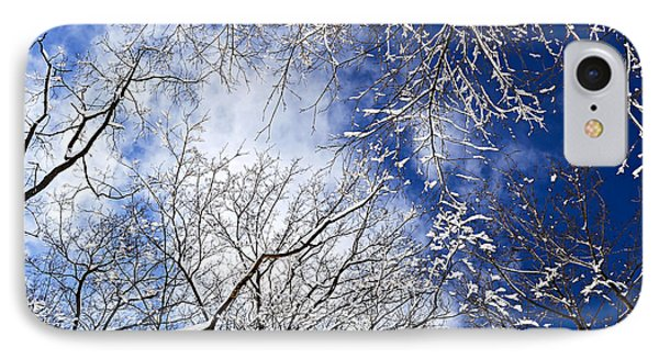 Winter Trees And Blue Sky IPhone Case by Elena Elisseeva