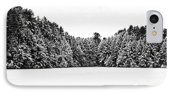 Winter Trees Mink Brook Hanover Nh Phone Case by Edward Fielding