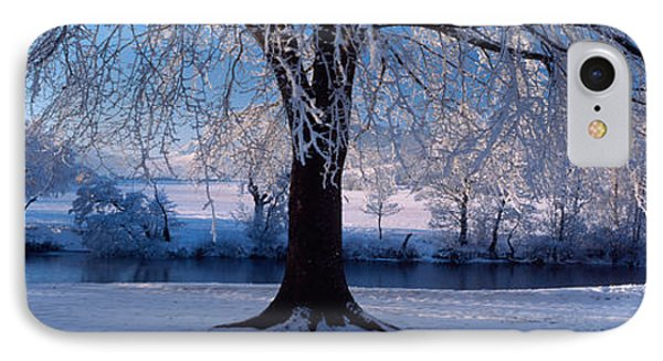 Winter Trees Perkshire Scotland IPhone Case by Panoramic Images