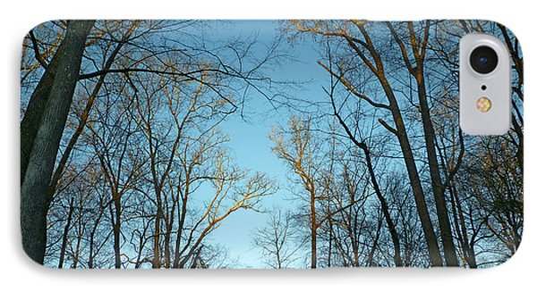 IPhone Case featuring the photograph Winter Trees by Pete Trenholm
