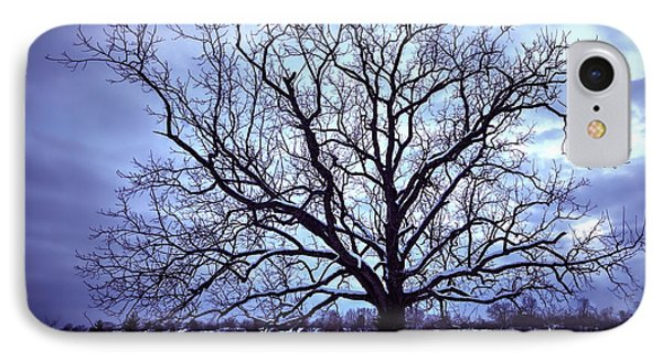 IPhone Case featuring the photograph Winter Twilight Tree by Jaki Miller