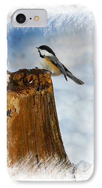 Winter Visitor IPhone Case by Elaine Manley
