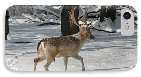 Winter Walk IPhone Case by Living Color Photography Lorraine Lynch