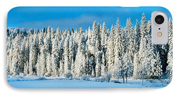 Winter Wawona Meadow Yosemite National IPhone Case