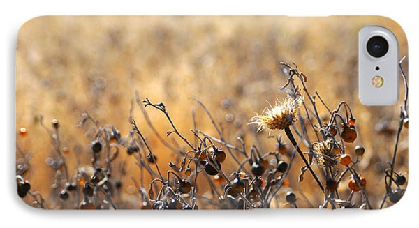 Winter Weeds IPhone Case