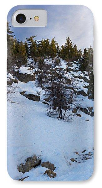 Winter White IPhone Case
