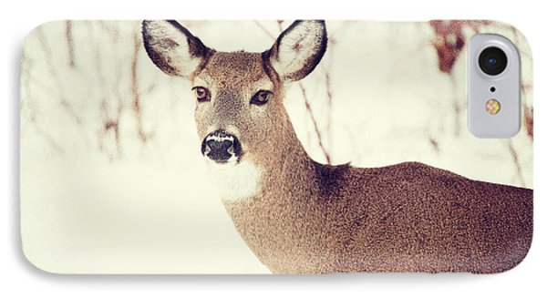 Winter White Tail Phone Case by Karol Livote
