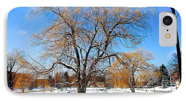 Winter Willow Phone Case by Frozen in Time Fine Art Photography