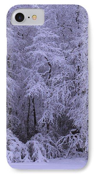 Winter Wonderland 1 IPhone Case by Mike McGlothlen