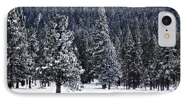 Winter Wonderland IPhone Case by Melanie Lankford Photography