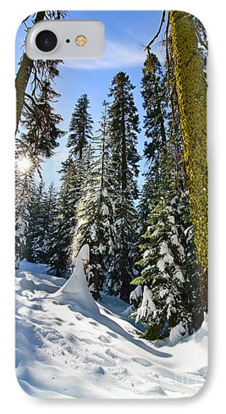 Winter Wonderland Of Badger Pass In Yosemite National Park IPhone Case by Jamie Pham