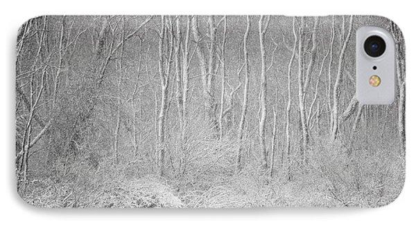 Winter Wood 2013 IPhone Case by Joan Davis
