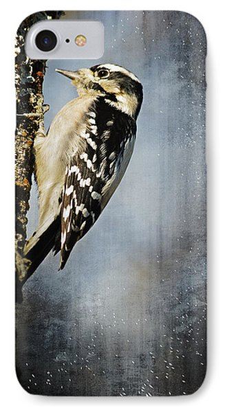 Winter Woodpecker IPhone Case by Lena Wilhite