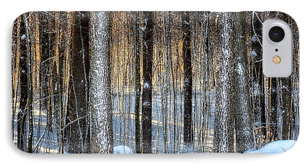 Winter Woods IPhone Case by Tricia Marchlik