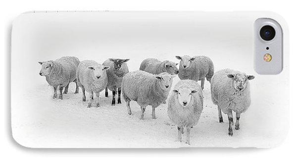 Sheep iPhone 7 Case - Winter Woollies by Janet Burdon