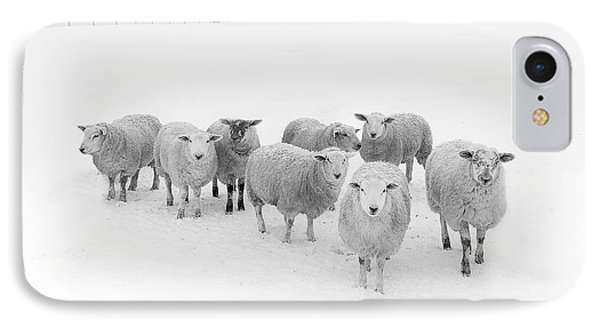 Rural Scenes iPhone 7 Case - Winter Woollies by Janet Burdon