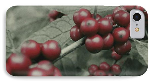 IPhone Case featuring the photograph Winterberry Greetings by Photographic Arts And Design Studio