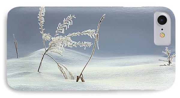Winter's Dance IPhone Case by Kathy Bassett