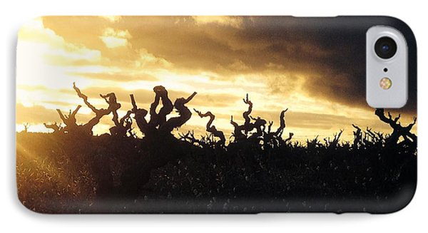 Winters Eve In The Vineyard Phone Case by France  Art