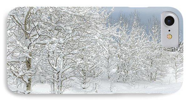 Winter's Glory - Grand Tetons Phone Case by Sandra Bronstein