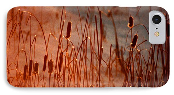 IPhone Case featuring the photograph Winter's Glow by R Thomas Brass