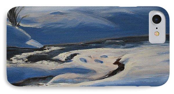 Winter's Lifeless World IPhone Case by Celeste Drewien