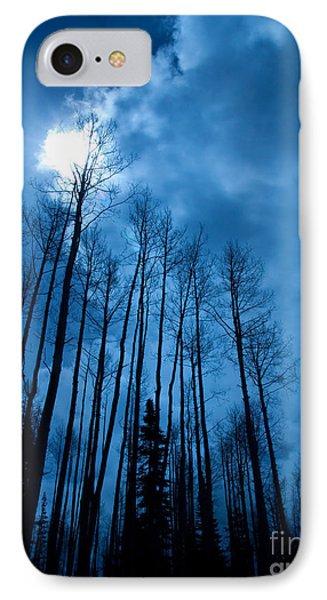 Winters Sky Phone Case by Dana Kern