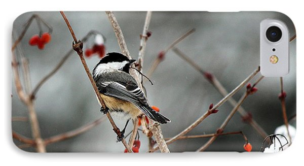 Wintertime Chickadee IPhone Case