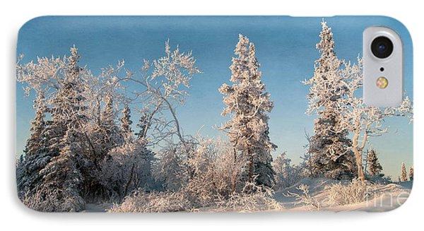 Wintery IPhone Case by Priska Wettstein