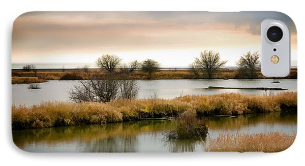 IPhone Case featuring the photograph Wintery Wetlands by Jordan Blackstone