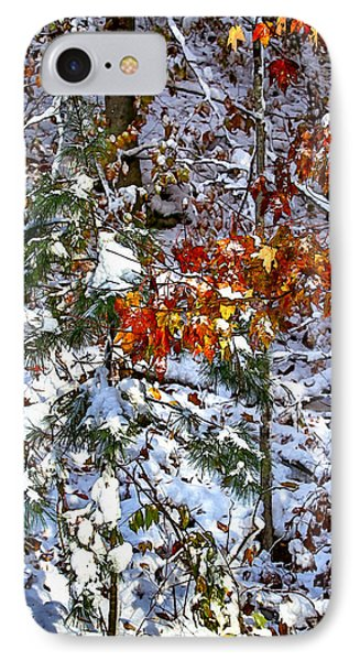 Wintry Mix IPhone Case