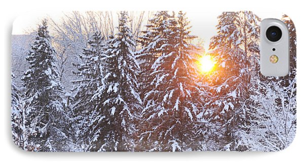 Wintry Sunset IPhone Case by Larry Ricker
