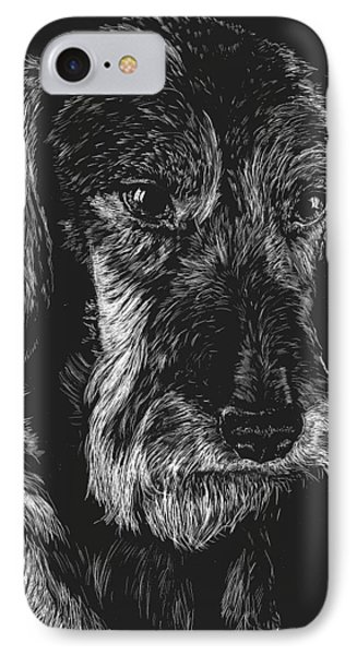 Wire Haired Dachshund IPhone Case by Rachel Hames