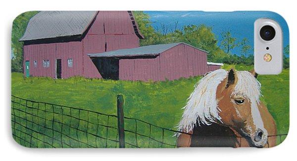 Wisconsin Barn IPhone Case