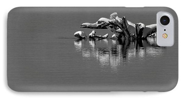 Wisconsin River Phone Case by Steven Ralser