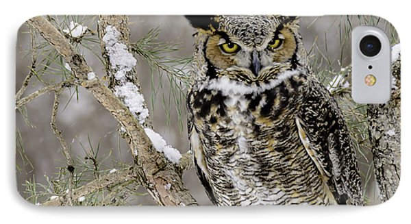 Wise Old Great Horned Owl IPhone Case