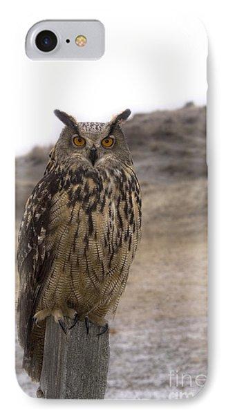 Wise One IPhone Case by Wildlife Fine Art