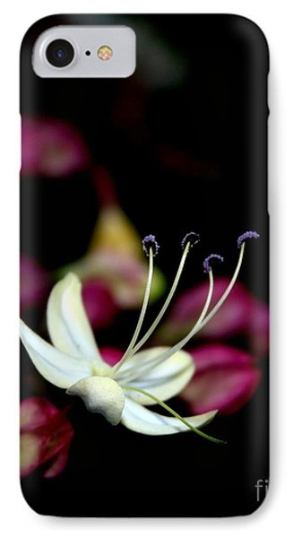 IPhone Case featuring the photograph Wish I May by Geri Glavis