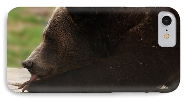 IPhone Case featuring the photograph Wish I Was A Polar Bear by B Wayne Mullins