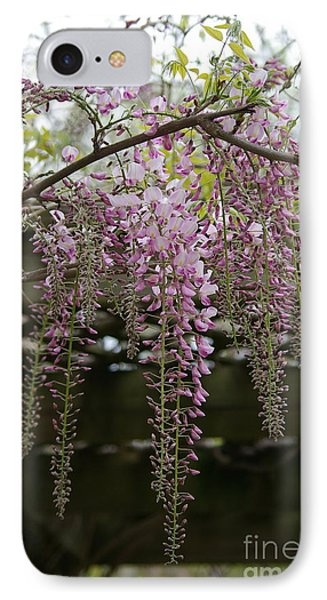Wisteria Fall IPhone Case