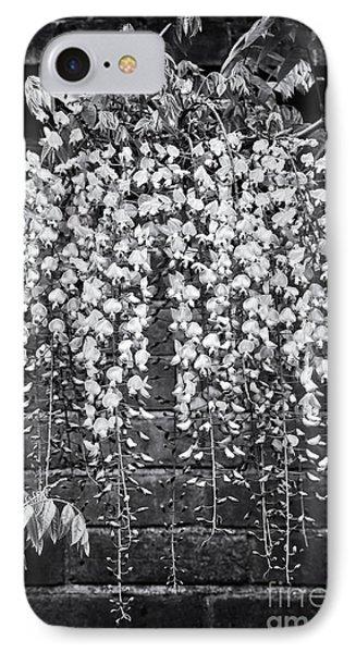 Wisteria Floribunda Kuchi Beni  Phone Case by Tim Gainey
