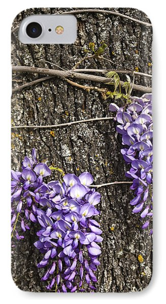 Wisteria  IPhone Case by Sherri Meyer