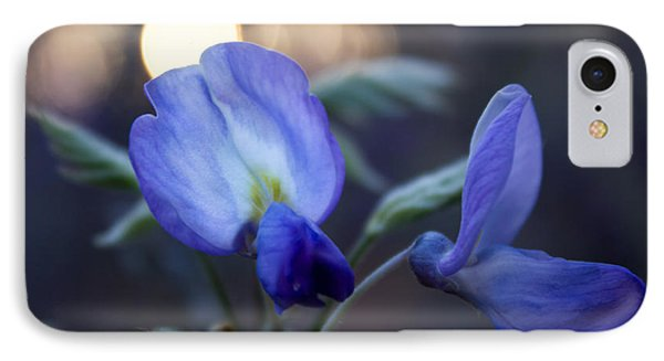 IPhone Case featuring the photograph Wisteria Sunset by Glenn DiPaola