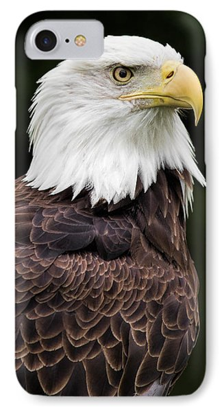 With Dignity IPhone Case by Dale Kincaid