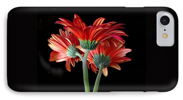 IPhone Case featuring the photograph With Love by Brenda Pressnall