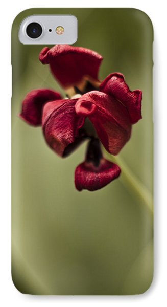 Withered Tulip IPhone Case