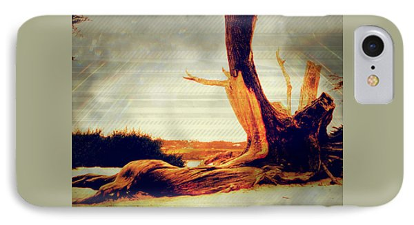 Withstanding The Storms IPhone Case by Sherry Flaker