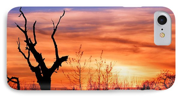 IPhone Case featuring the photograph Witness Of The Beauty by Rima Biswas